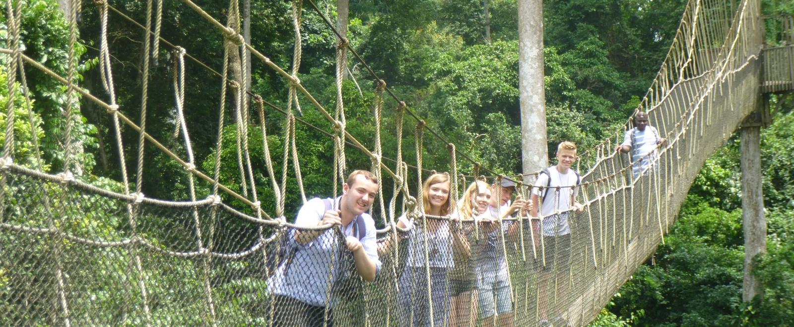 Projects Abroad volunteers enjoy a fun canopy walk in a forest in ghana.